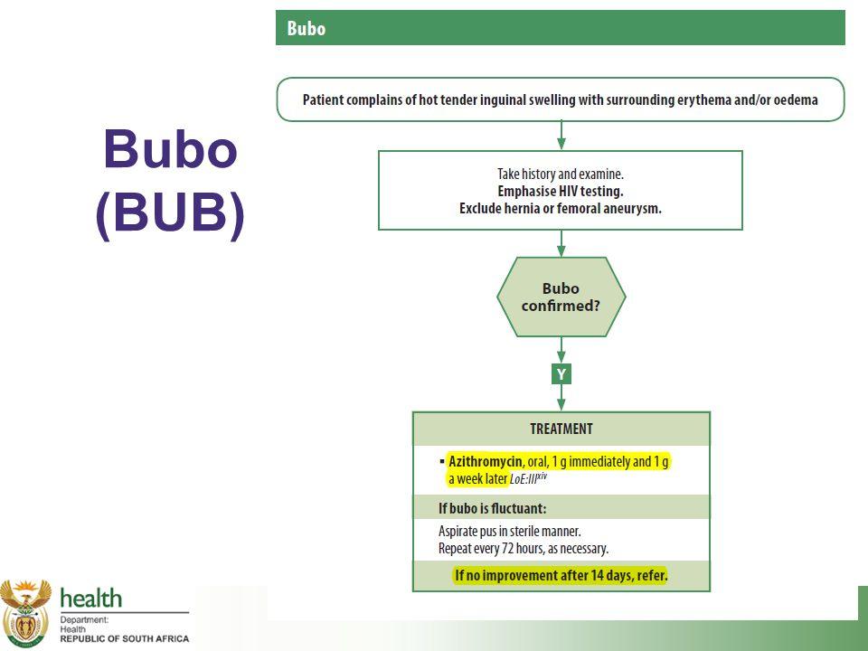 Bubo (BUB)