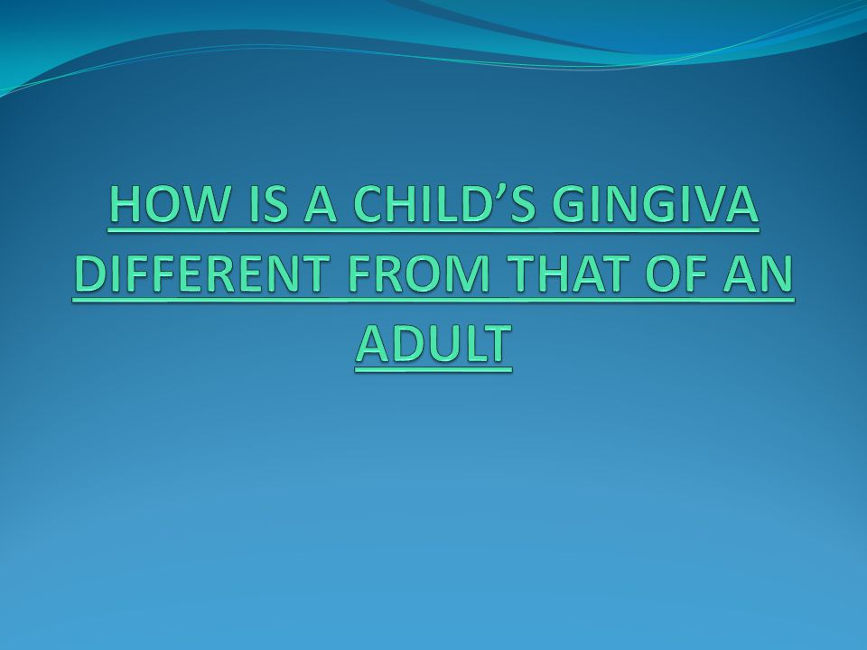 HOW IS A CHILD'S GINGIVA DIFFERENT FROM THAT OF AN ADULT