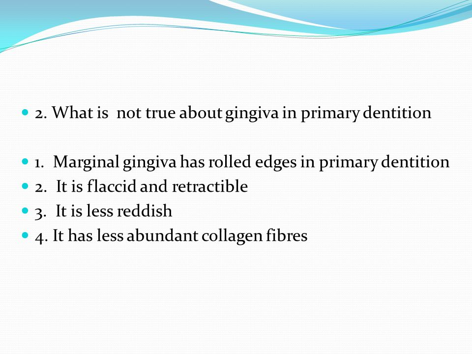 2. What is not true about gingiva in primary dentition