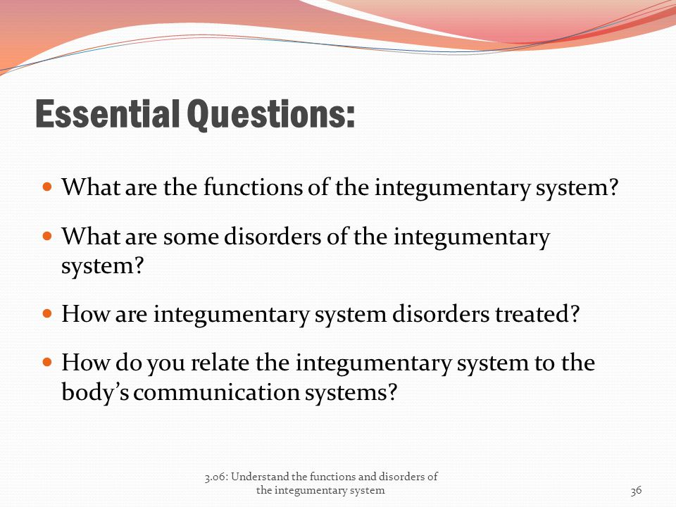 Essential Questions: What are the functions of the integumentary system What are some disorders of the integumentary system