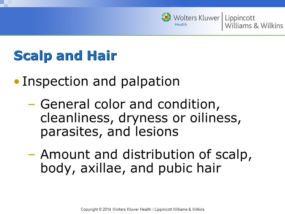Scalp and Hair Inspection and palpation. General color and condition, cleanliness, dryness or oiliness, parasites, and lesions.