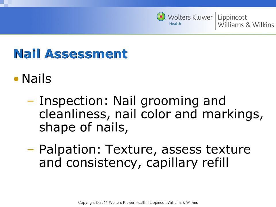 Nail Assessment Nails. Inspection: Nail grooming and cleanliness, nail color and markings, shape of nails,