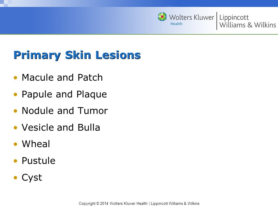 Primary Skin Lesions Macule and Patch Papule and Plaque