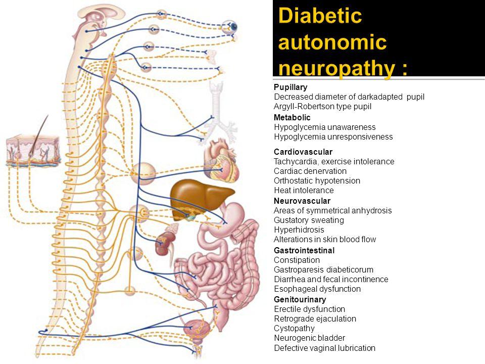 Diabetic autonomic neuropathy :