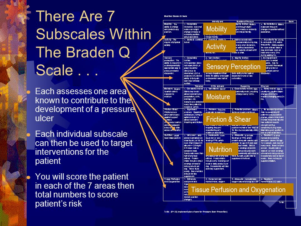 There Are 7 Subscales Within The Braden Q Scale . . .