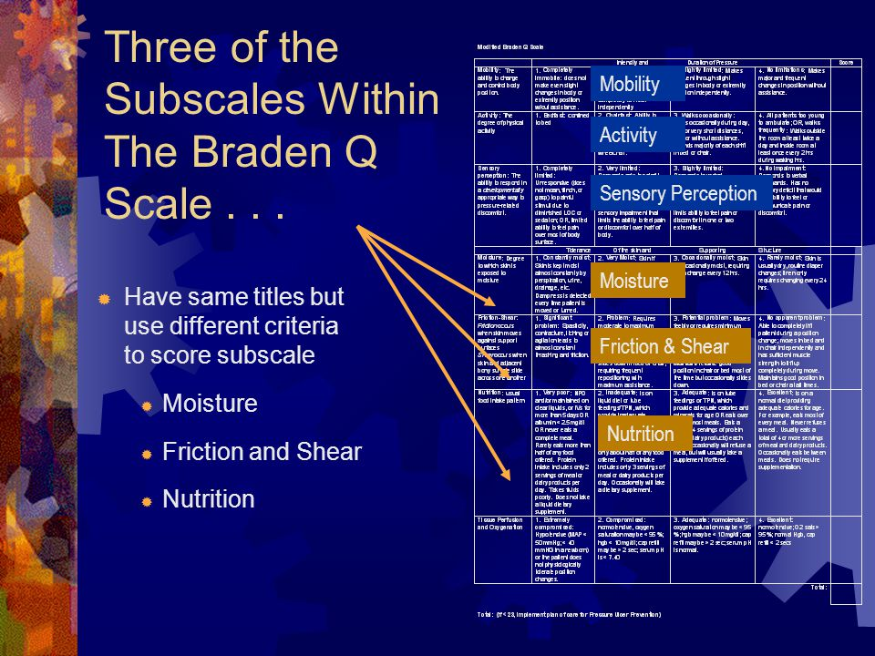 Three of the Subscales Within The Braden Q Scale . . .