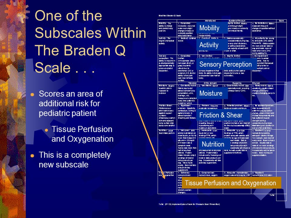 One of the Subscales Within The Braden Q Scale . . .
