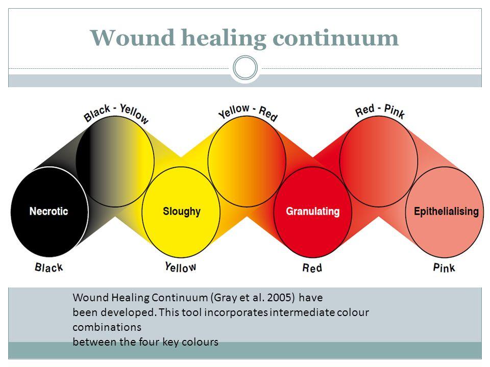 Wound healing continuum