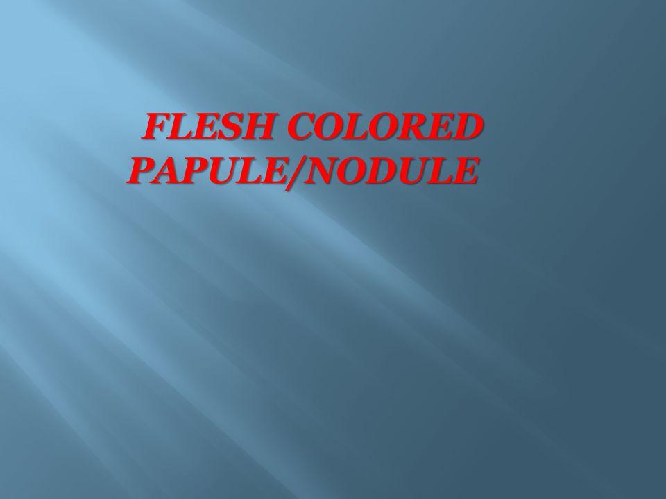 FLESH COLORED PAPULE/NODULE