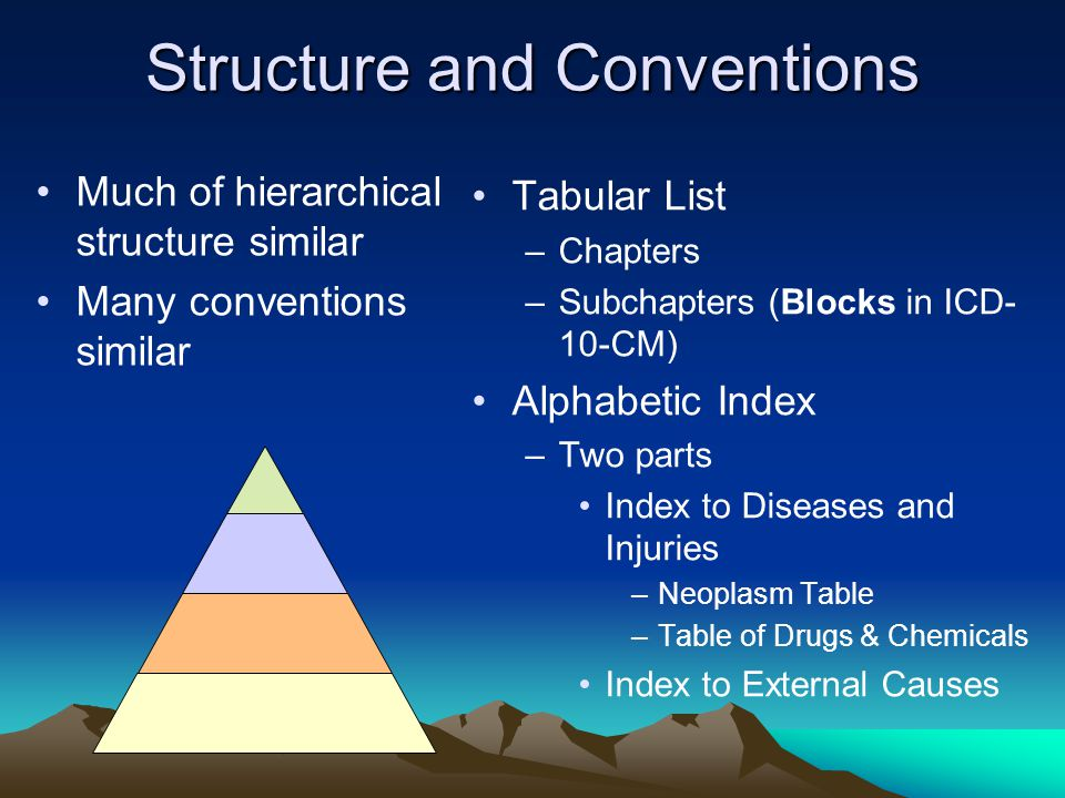 Structure and Conventions