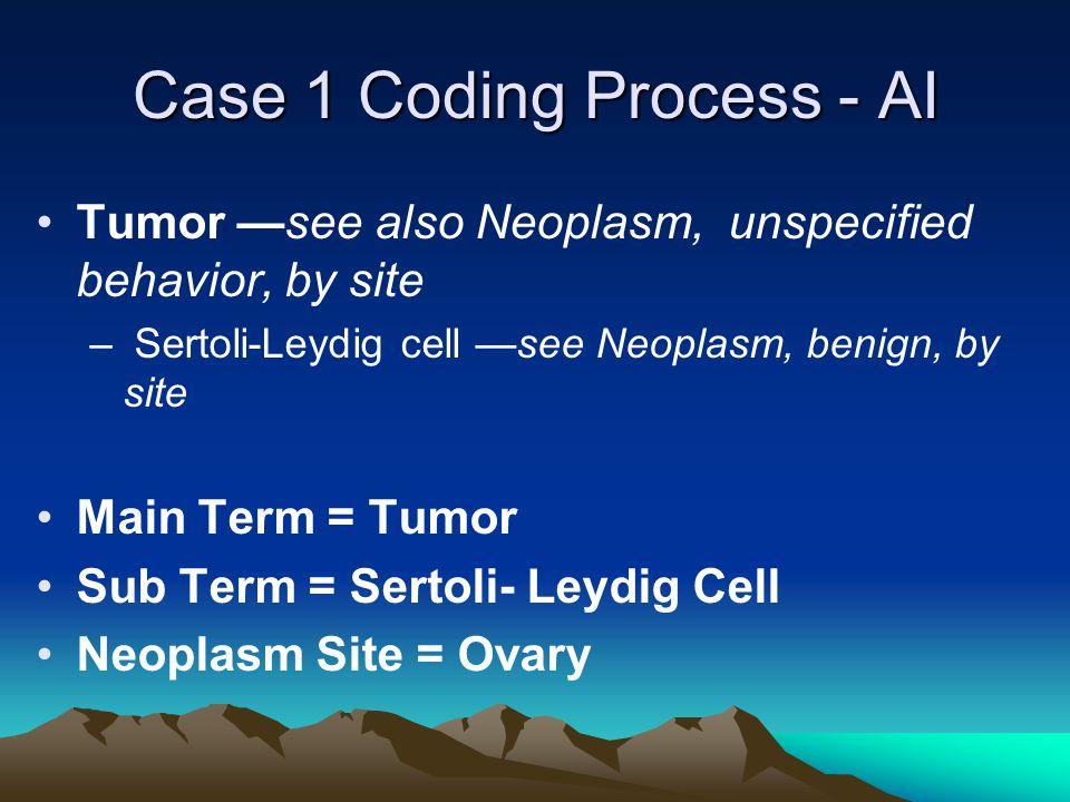 Case 1 Coding Process - AI