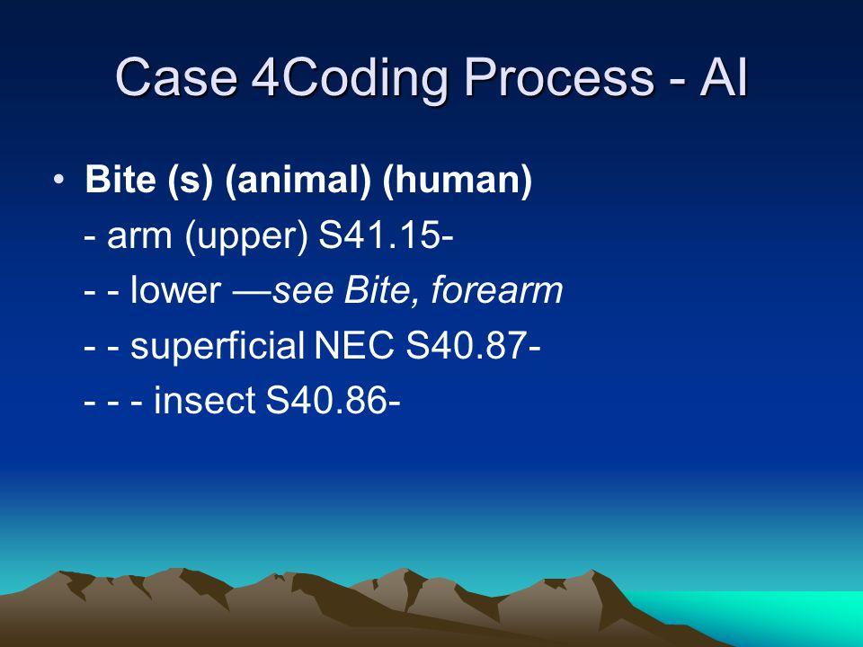 Case 4Coding Process - AI