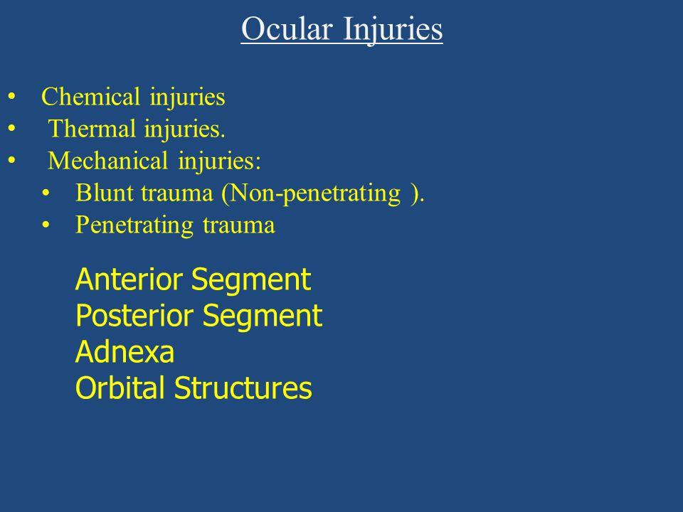 Ocular Injuries Anterior Segment Posterior Segment Adnexa