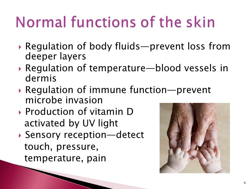 Normal functions of the skin