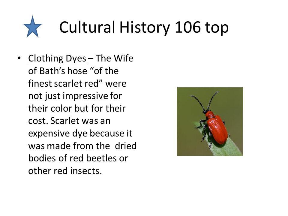 Cultural History 106 top