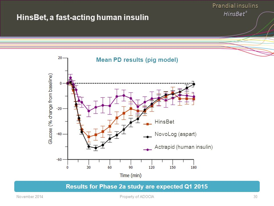 HinsBet, a fast-acting human insulin