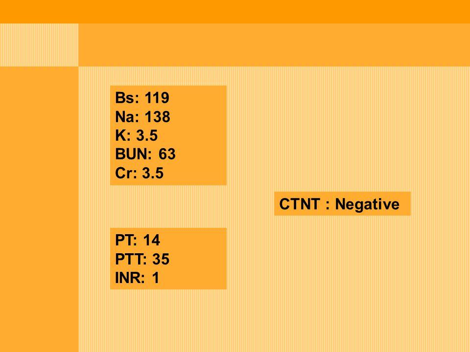Bs: 119 Na: 138 K: 3.5 BUN: 63 Cr: 3.5 CTNT : Negative PT: 14 PTT: 35 INR: 1