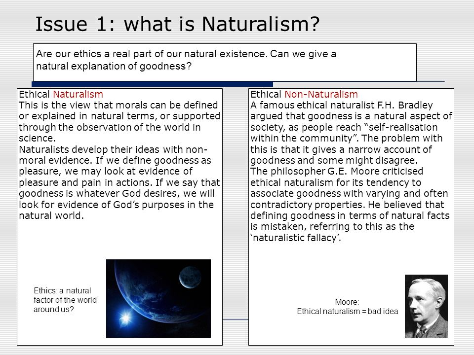Ethical naturalism = bad idea