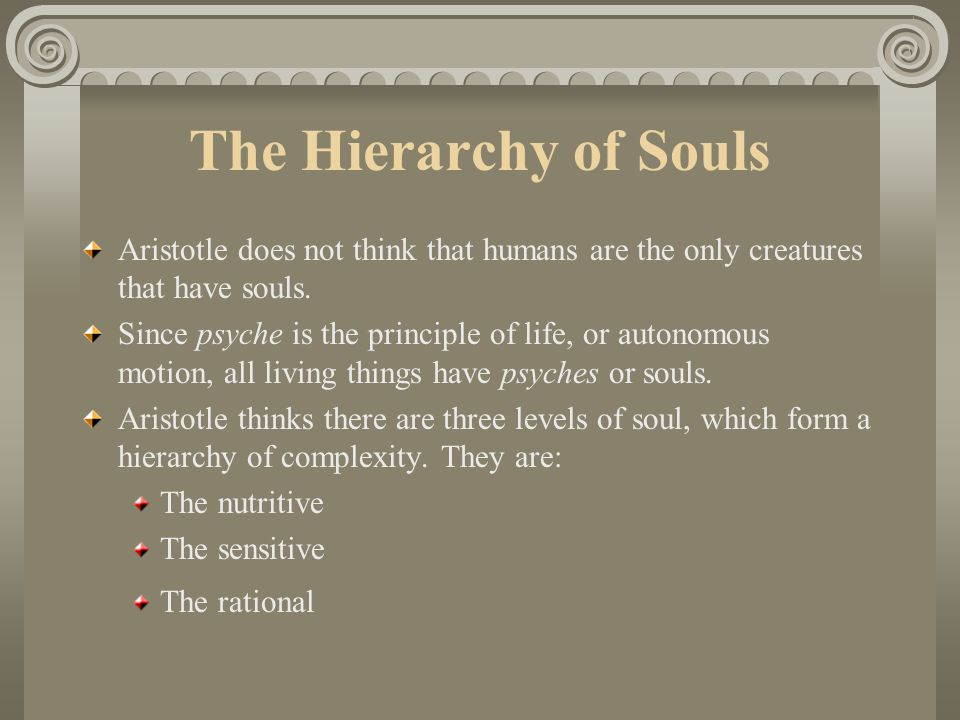 The Hierarchy of Souls Aristotle does not think that humans are the only creatures that have souls.