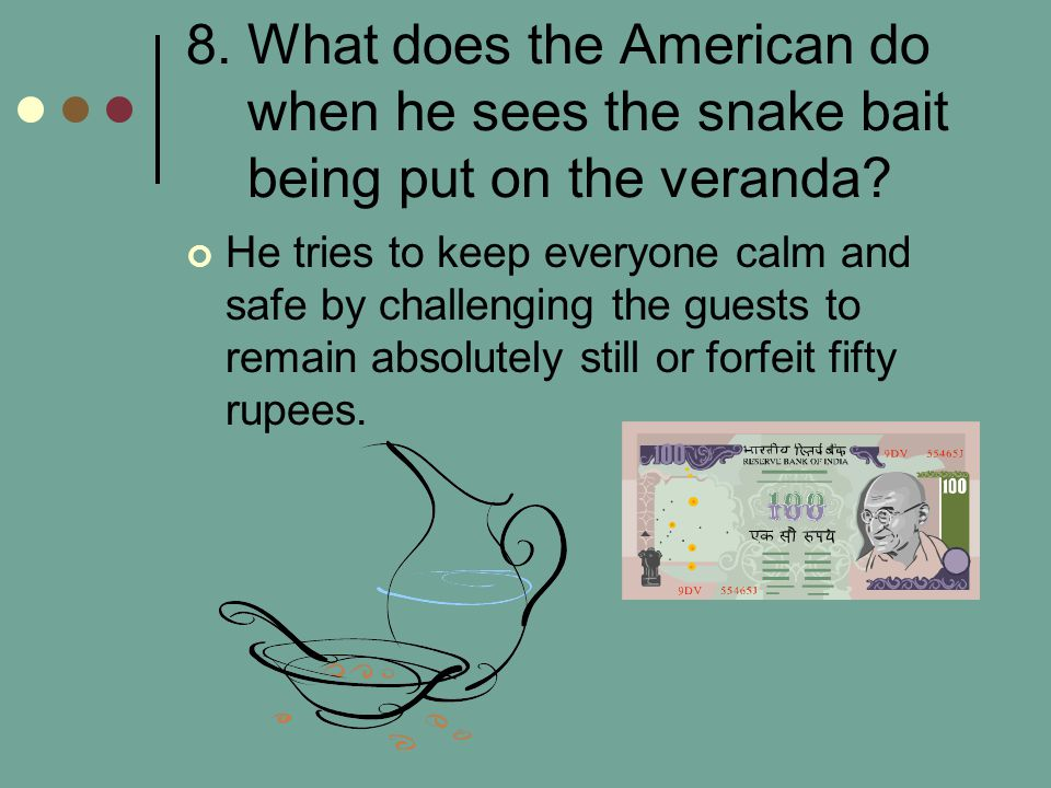 8. What does the American do when he sees the snake bait being put on the veranda