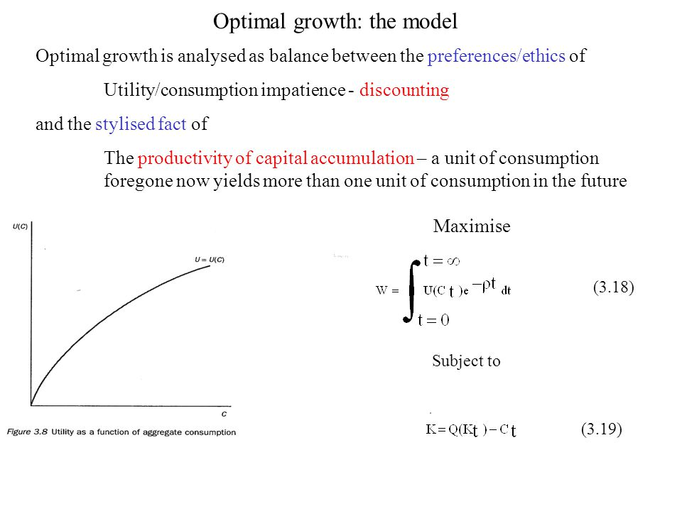 Optimal growth: the model