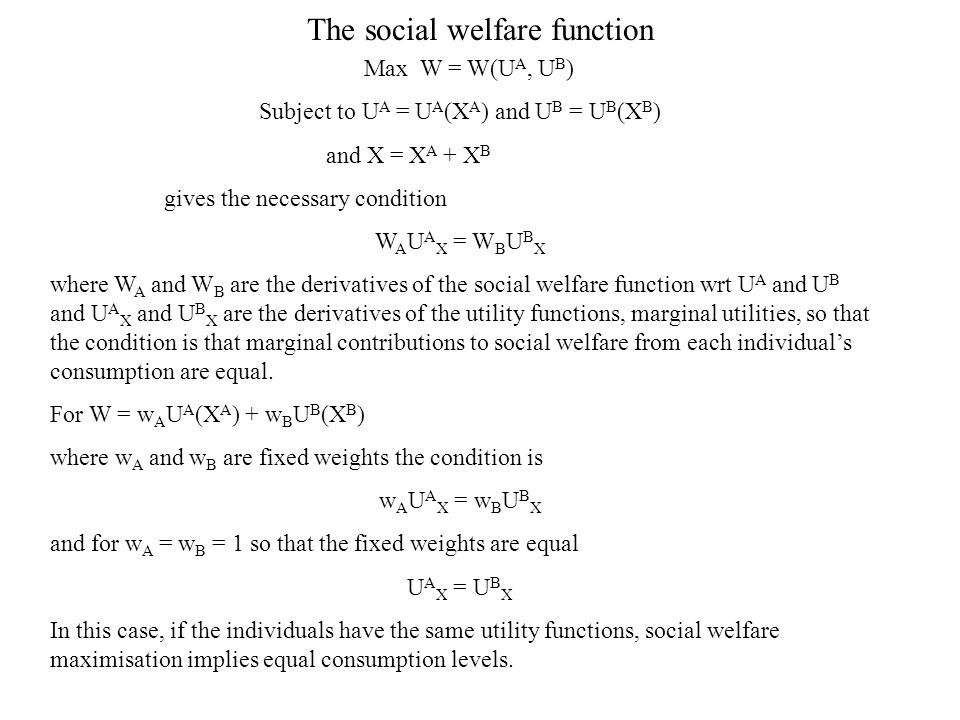 The social welfare function