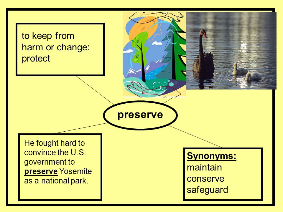 preserve to keep from harm or change: protect Synonyms: maintain