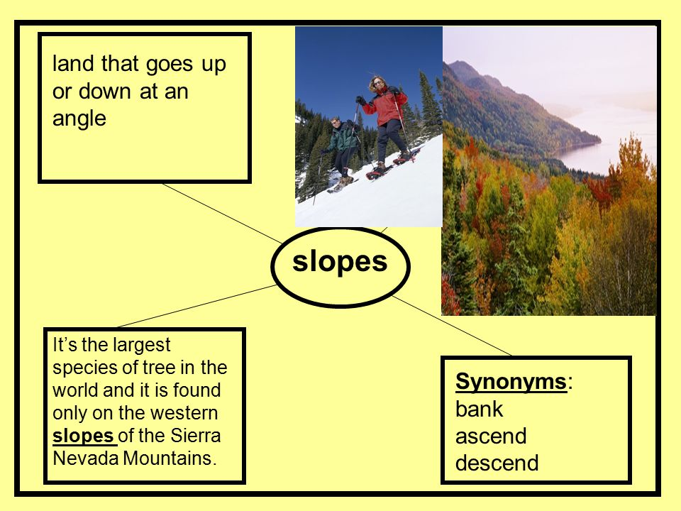 slopes land that goes up or down at an angle Synonyms: bank ascend