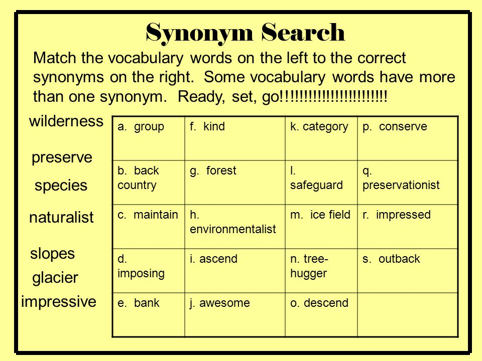 Synonym Search