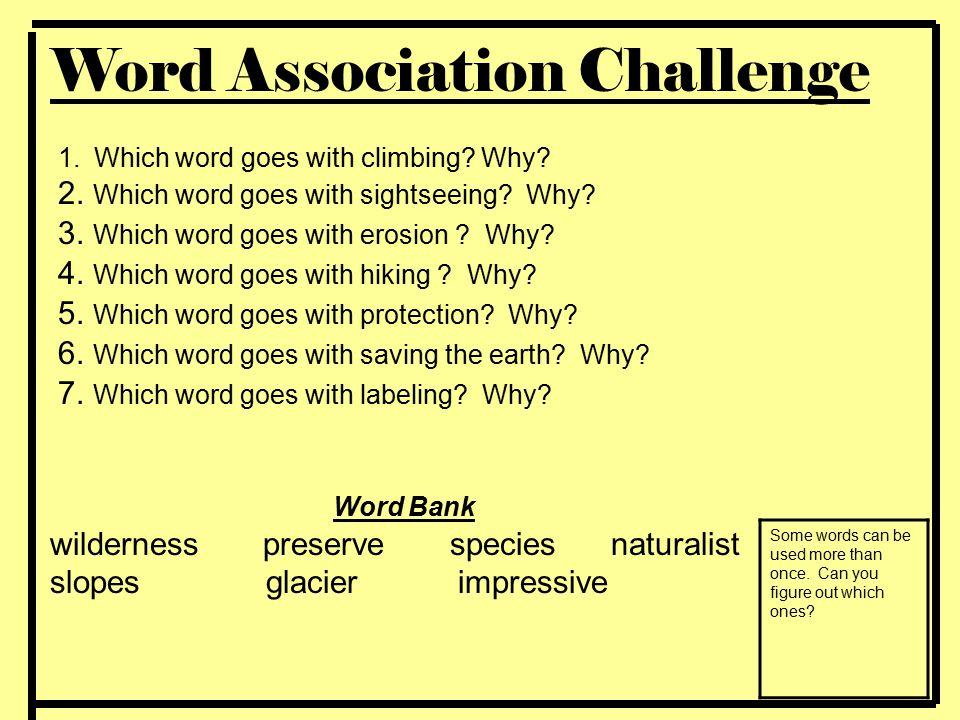 Word Association Challenge