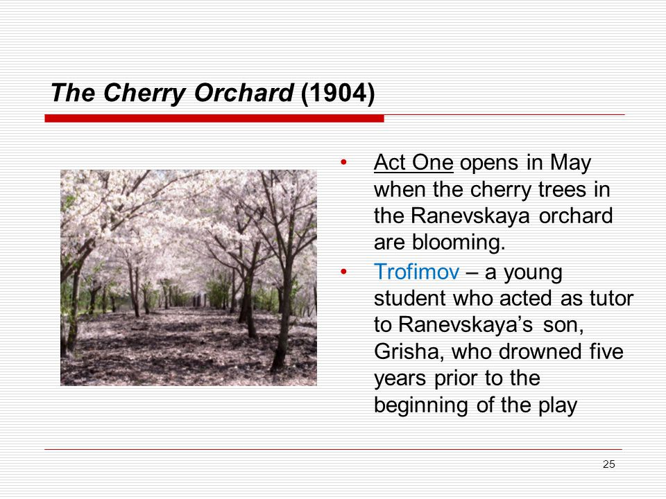 The Cherry Orchard (1904) Act One opens in May when the cherry trees in the Ranevskaya orchard are blooming.