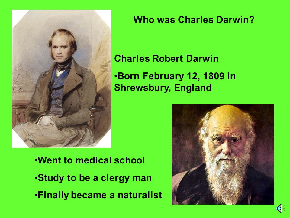 Who was Charles Darwin Charles Robert Darwin. Born February 12, 1809 in Shrewsbury, England. Went to medical school.
