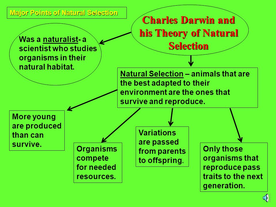 Charles Darwin and his Theory of Natural Selection
