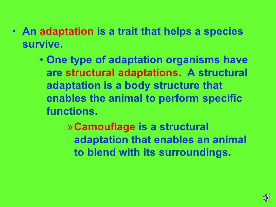 An adaptation is a trait that helps a species survive.