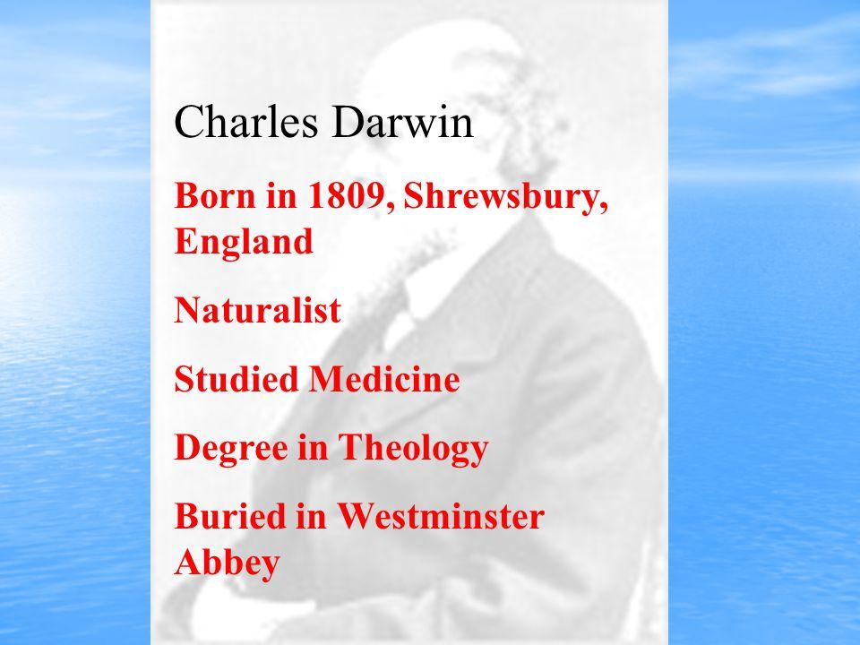 Charles Darwin Born in 1809, Shrewsbury, England Naturalist