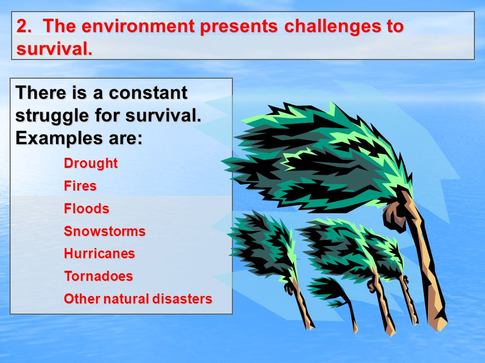 2. The environment presents challenges to survival.