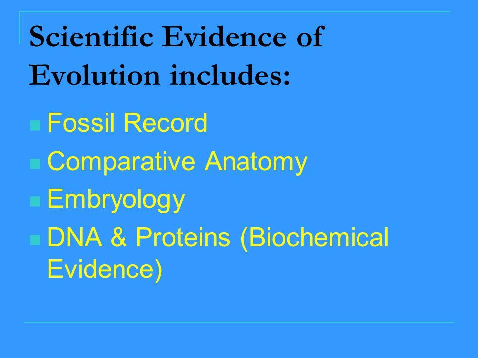 Scientific Evidence of Evolution includes: