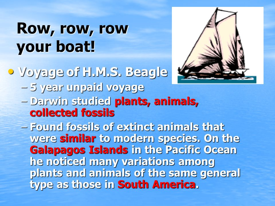 Row, row, row your boat! Voyage of H.M.S. Beagle 5 year unpaid voyage