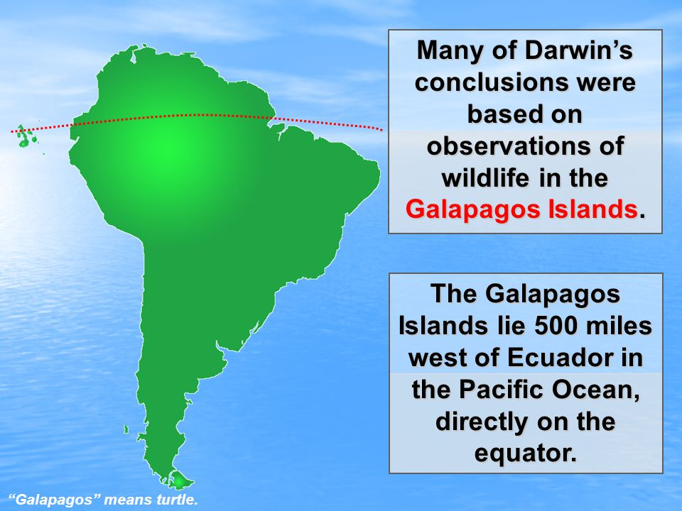 Many of Darwin's conclusions were based on observations of wildlife in the Galapagos Islands.