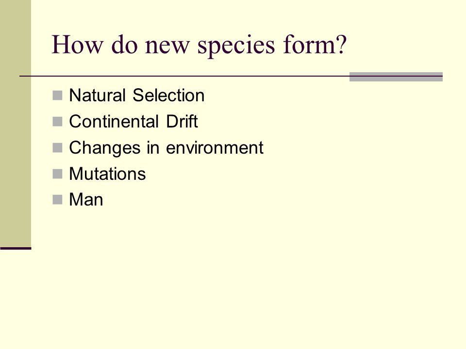 How do new species form Natural Selection Continental Drift