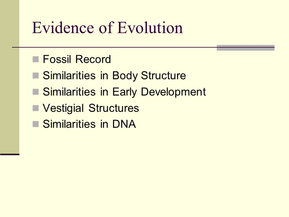 Evidence of Evolution Fossil Record Similarities in Body Structure