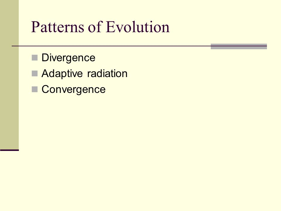 Patterns of Evolution Divergence Adaptive radiation Convergence