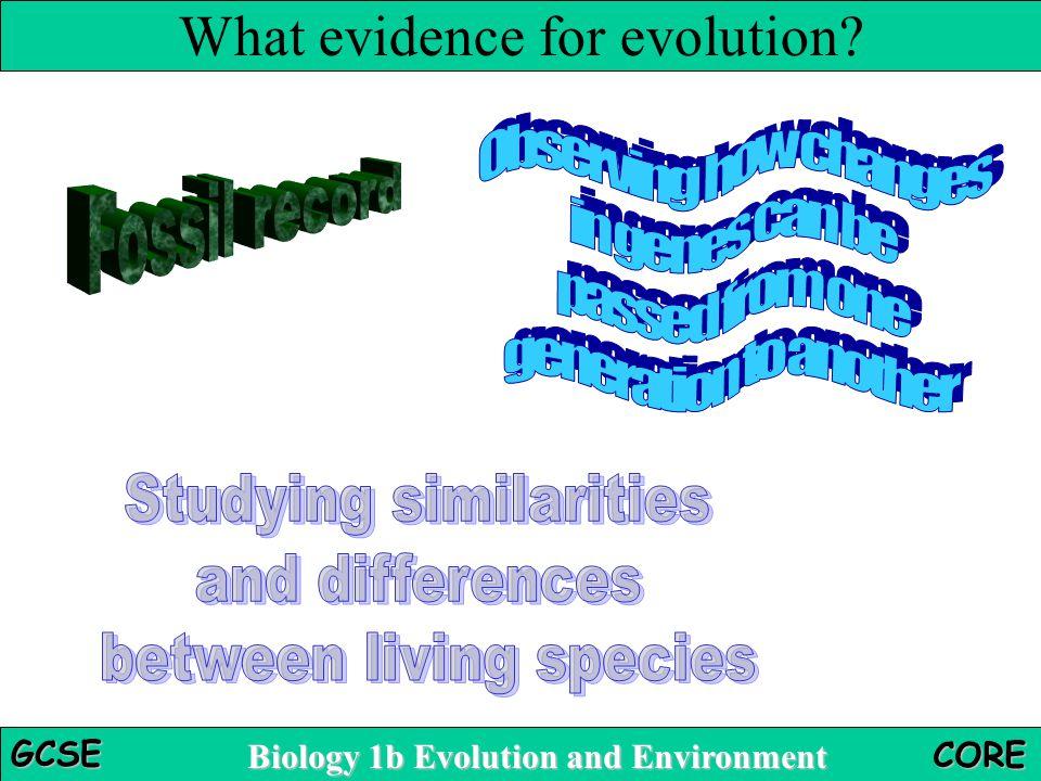 What evidence for evolution