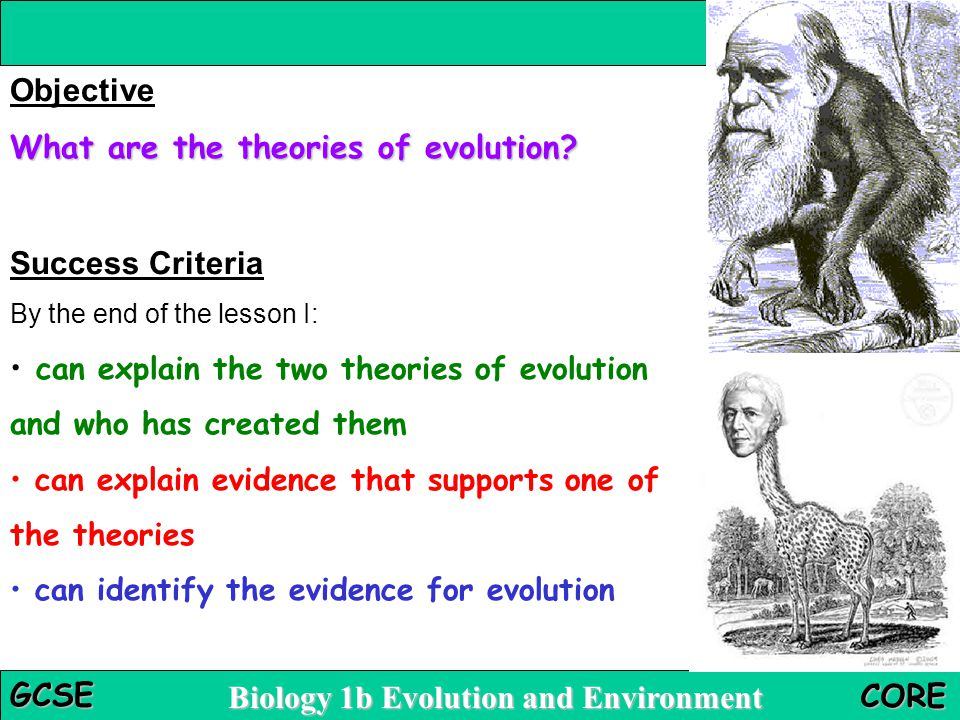What are the theories of evolution