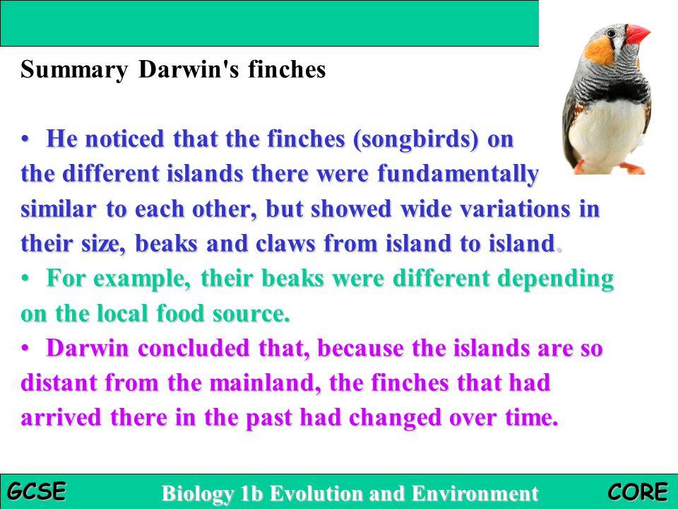 Summary Darwin s finches