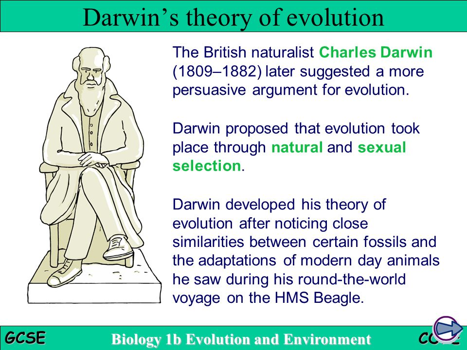 an analysis of the topic of evolution in the biology Index of topics in biology (an analysis of biology of beauty) the evolution of techologically inspired evlutionary thoughts.