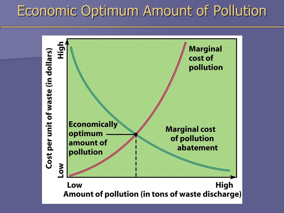 Economic Optimum Amount of Pollution