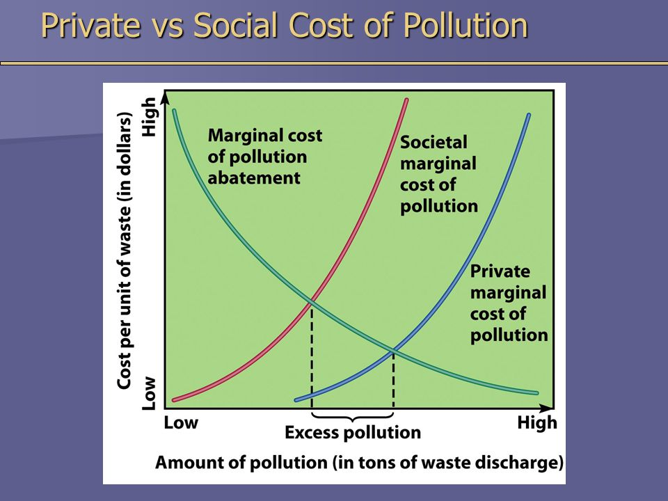 Private vs Social Cost of Pollution