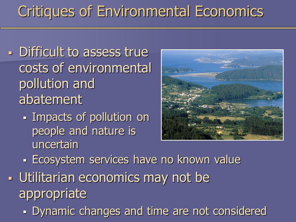 Critiques of Environmental Economics