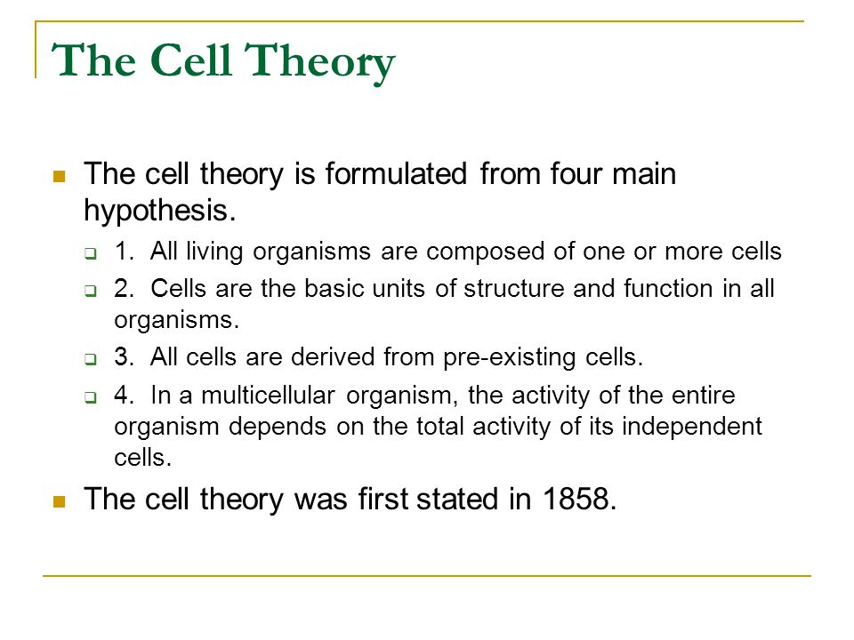 The Cell Theory The cell theory is formulated from four main hypothesis. 1. All living organisms are composed of one or more cells.